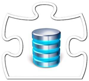 Puzzle_Data